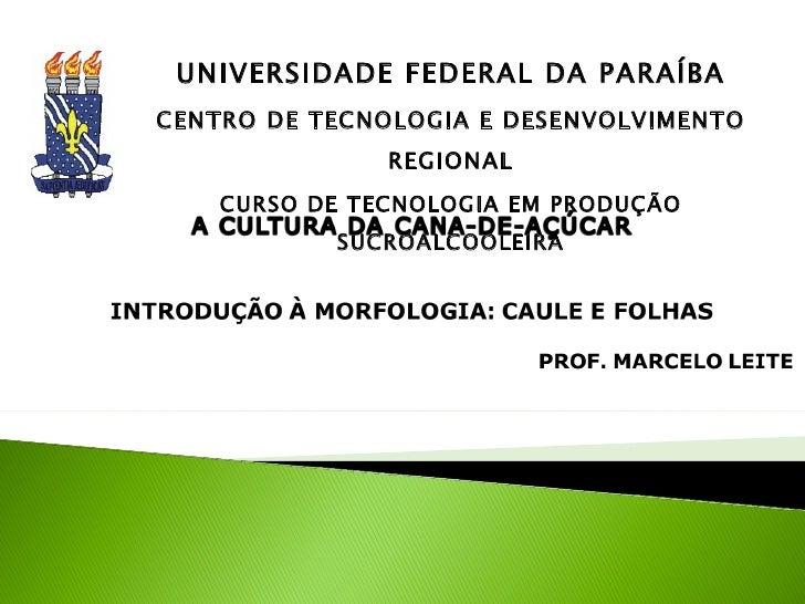 UNIVERSIDADE FEDERAL DA PARAÍBA CENTRO DE TECNOLOGIA E DESENVOLVIMENTO REGIONAL CURSO DE TECNOLOGIA EM PRODUÇÃO SUCROALCOO...