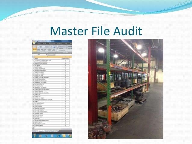 Master File Audit