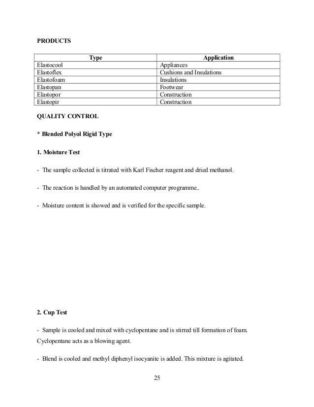 BASF FINAL REPORT