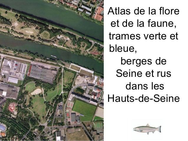 Atlas de la flore et de la faune, trames verte et bleue, berges de Seine et rus dans les Hauts-de-Seine