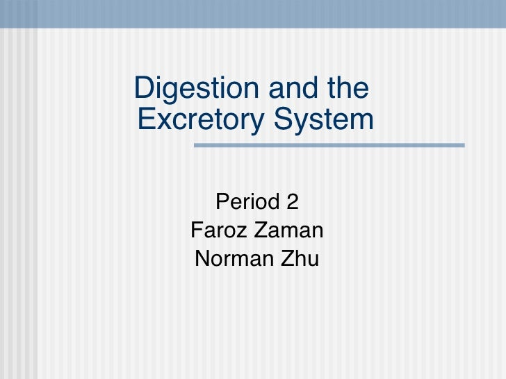 Digestion and the  Excretory System Period 2 Faroz Zaman Norman Zhu