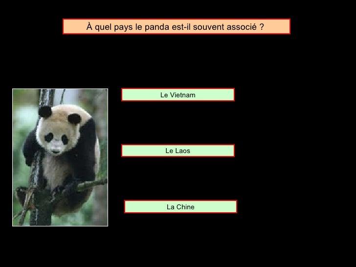 À  quel pays le panda est-il souvent associé ?  Le Laos Le Vietnam La Chine