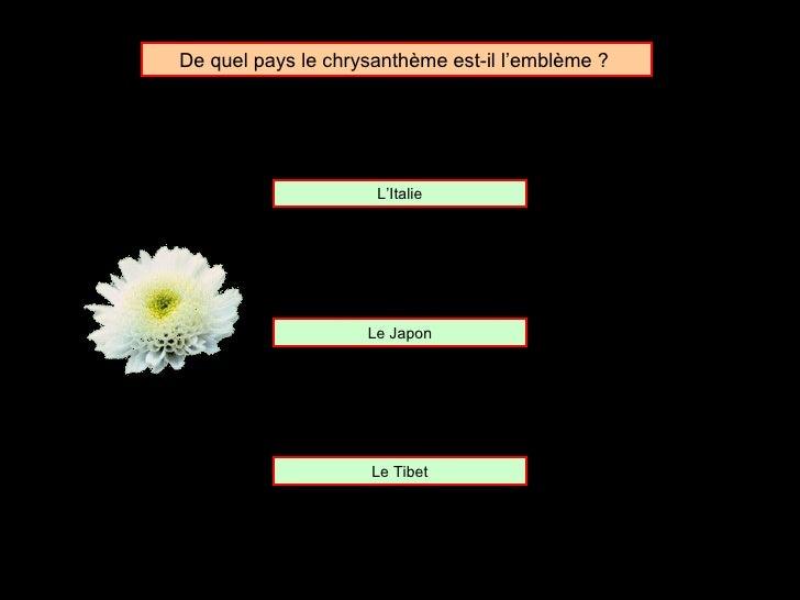 De quel pays le chrysanthème est-il l'emblème ?  L'Italie Le Japon Le Tibet