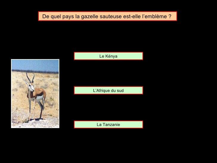 De quel pays la gazelle sauteuse est-elle l'emblème ?  L'Afrique du sud Le Kénya La Tanzanie