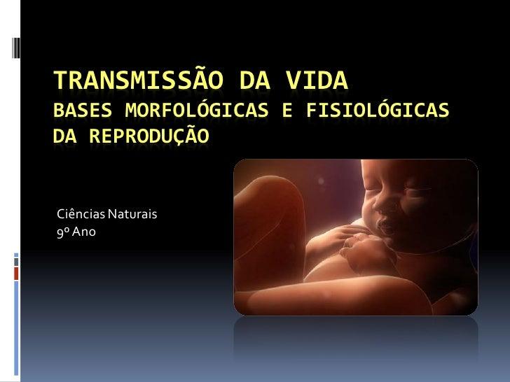TRANSMISSÃO DA VIDA BASES MORFOLÓGICAS E FISIOLÓGICAS DA REPRODUÇÃO   Ciências Naturais 9º Ano