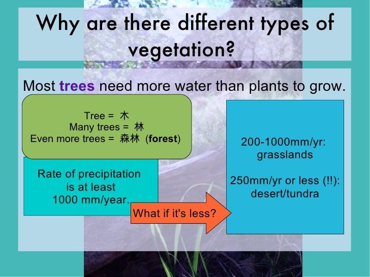 influence of vegetation and moisture of How does vegetation type influence soil respiration  soil moisture does not effect soil respiration rates methods pp systems src-1 soil co 2 flux system.