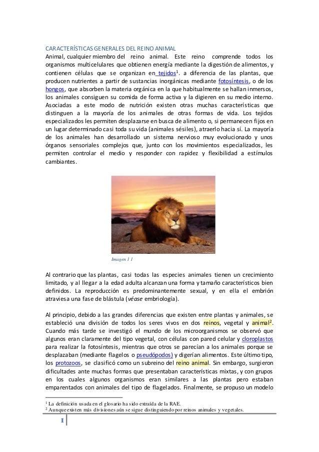 CARACTERÍSTICAS GENERALES DEL REINO ANIMAL  Animal, cualquier miembro del reino animal. Este reino comprende todos los  or...