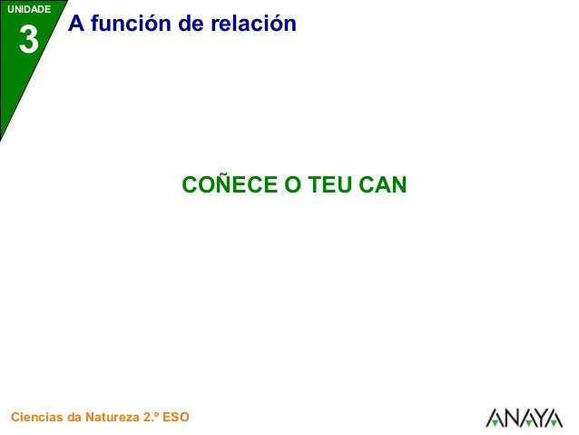 UNIDADE  3 A función de relación  COÑECE O TEU CAN  Ciencias da Natureza 2.º ESO