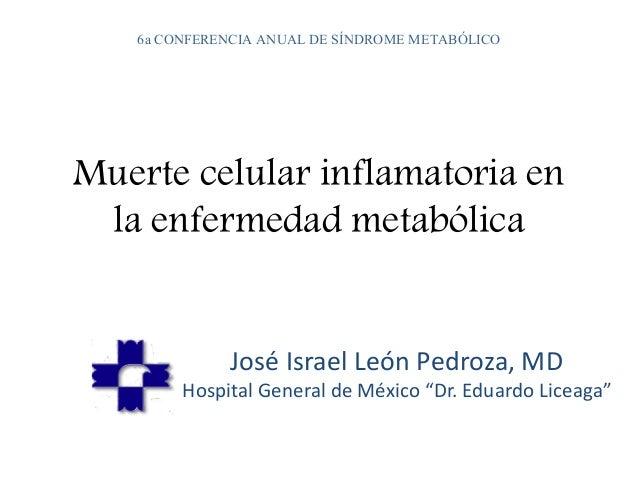 6a CONFERENCIA ANUAL DE SÍNDROME METABÓLICO  Muerte celular inflamatoria en  la enfermedad metabólica  José Israel León Pe...
