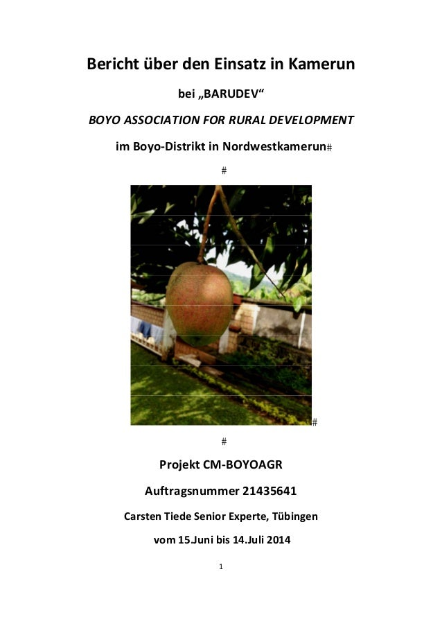 "1    Bericht über den Einsatz in Kamerun  bei ""BARUDEV""  BOYO ASSOCIATION FOR RURAL DEVELOPMENT  im Boyo‐Distrikt in Nordw..."