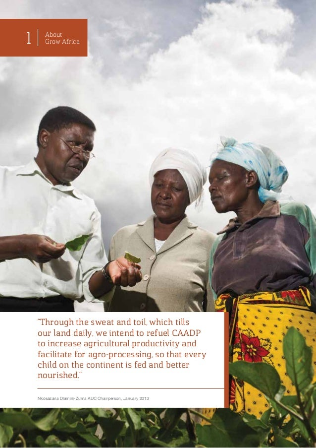benefits of the land reform programme in zimbabwe pdf