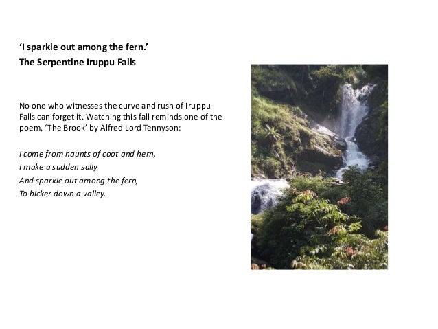 Itinerary for 2 day Trip to Coorg