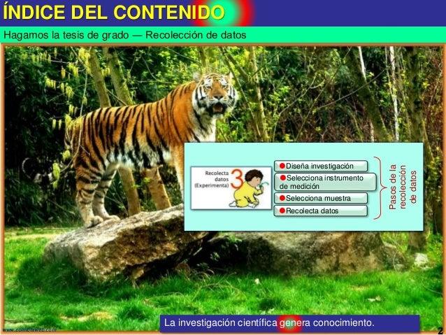 ÍNDICE DEL CONTENIDO 2www.coimbraweb.com Hagamos la tesis de grado ― Recolección de datos Selecciona instrumento de medic...