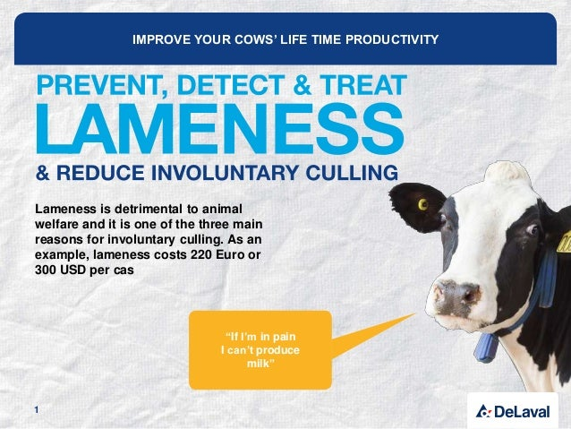 IMPROVE YOUR COWS' LIFE TIME PRODUCTIVITY Lameness is detrimental to animal welfare and it is one of the three main reason...