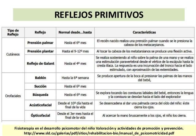 libro de reflejos fiorentino pdf