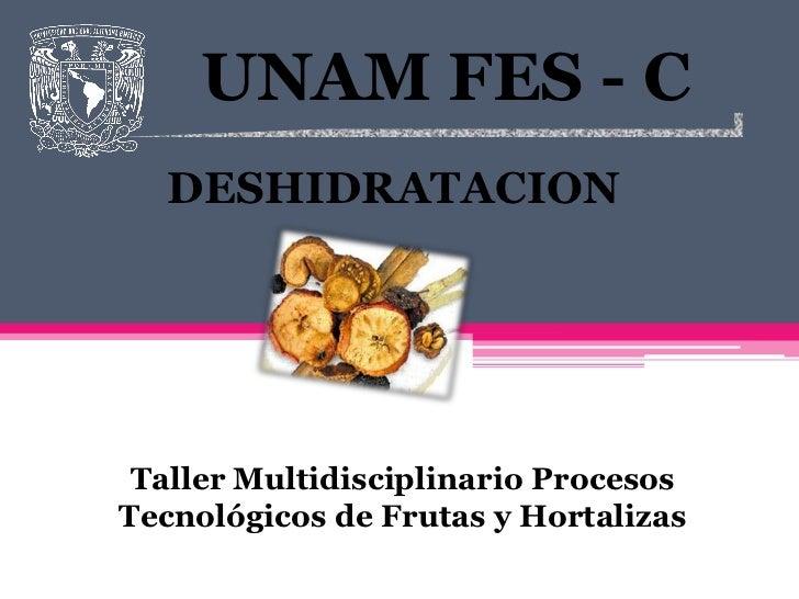 UNAM FES - C  DESHIDRATACION Taller Multidisciplinario ProcesosTecnológicos de Frutas y Hortalizas