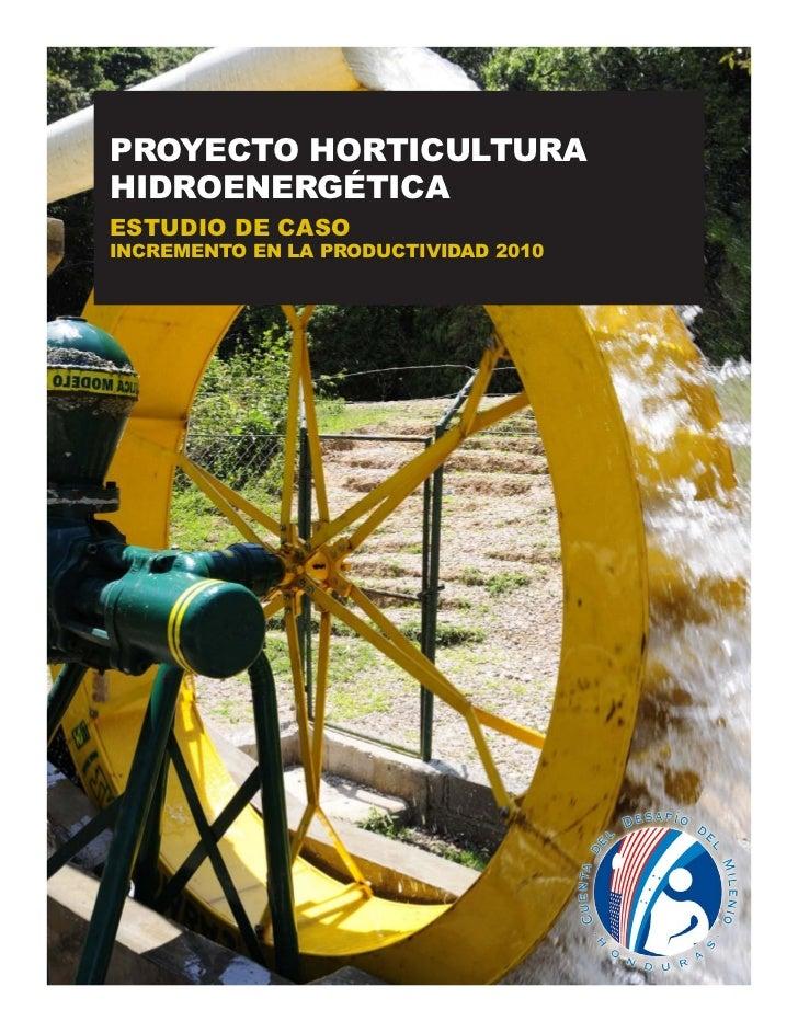 PROYECTO HORTICULTURAHIDROENERGÉTICAESTUDIO DE CASOINCREMENTO EN LA PRODUCTIVIDAD 2010
