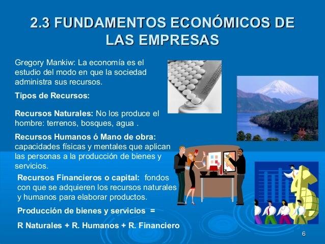 dinamica de las empresas y economia