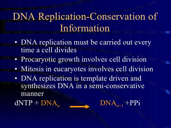 2dna replication 4 dna replication conservation pronofoot35fo Choice Image