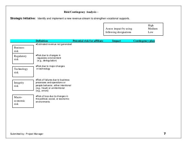 strategic initiative project plan example