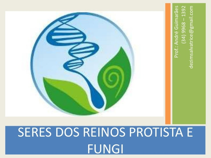 SERES DOS REINOS PROTISTA E FUNGI<br />Prof.: André Guimarães<br />(34) 9968 – 1392<br />dezimsalvatrice@gmail.com<br />