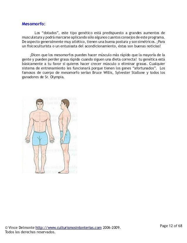 """Mesomorfo:          Los """"dotados"""", este tipo genético está predispuesto a grandes aumentos de         musculatura ..."""