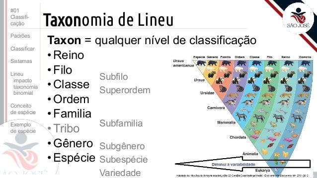TAXONOMIA DE LINEU EBOOK DOWNLOAD