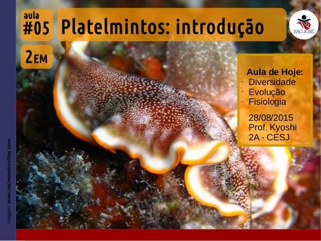 #05 28/08/2015 Prof. Kyoshi 2A - CESJ Imagem:www.realmonstrosities.com Aula de Hoje: • Diversidade • Evolução • Fisiologia...