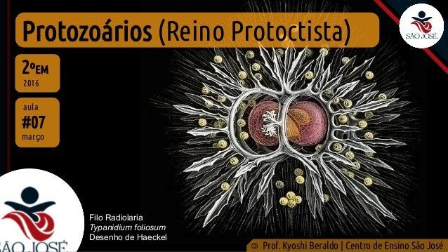 Protozoários (Reino Protoctista) #07 aula 2ºEM 2016 © Prof. Kyoshi Beraldo | Centro de Ensino São José março Filo Radiolar...