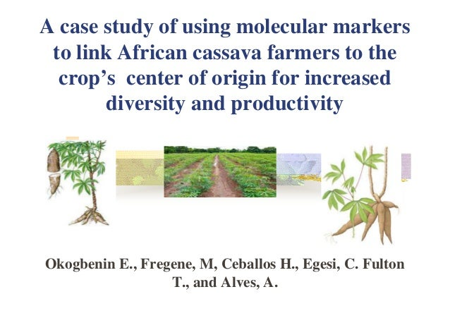 A case study of using molecular markers to link African cassava farmers to the crop's center of origin for increased diver...