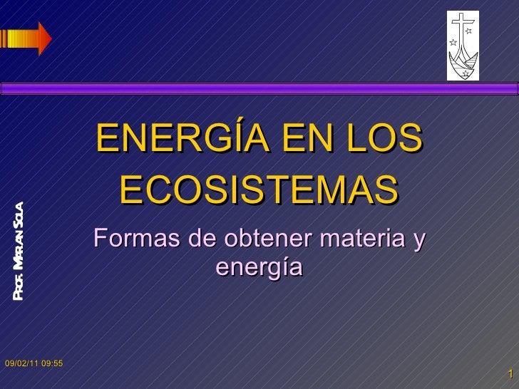 ENERGÍA EN LOS ECOSISTEMAS Formas de obtener materia y energía