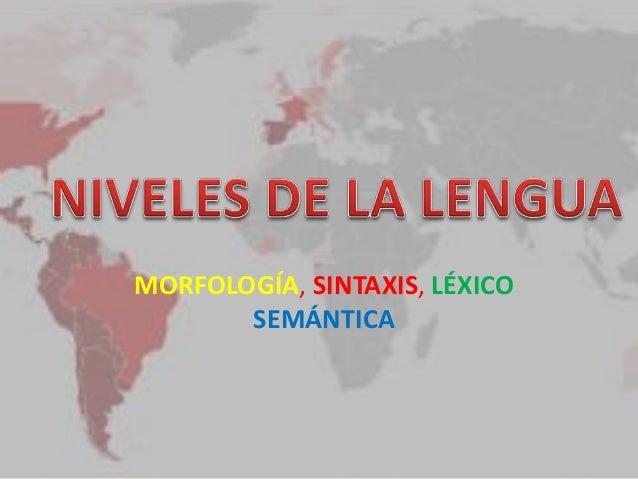 MORFOLOGÍA, SINTAXIS, LÉXICO SEMÁNTICA