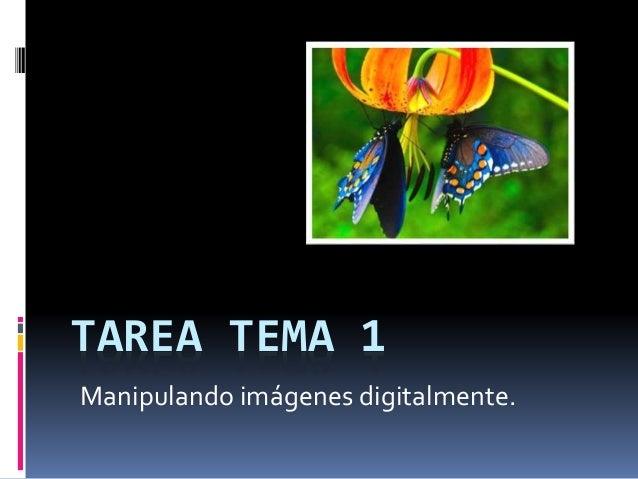 TAREA TEMA 1  Manipulando imágenes digitalmente.