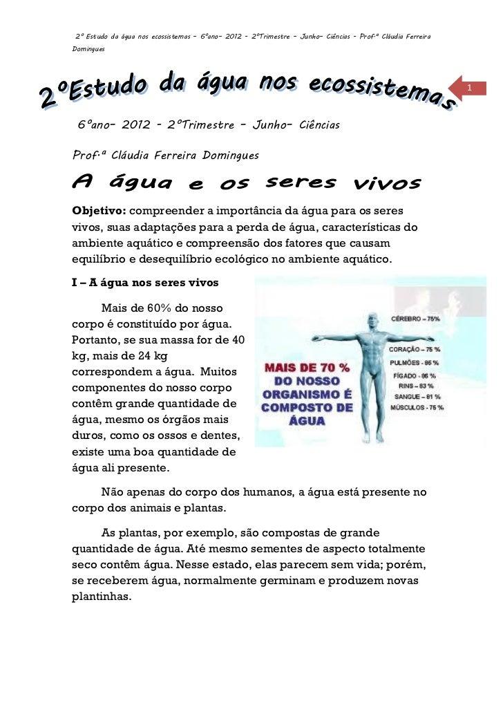2° Estudo da água nos ecossistemas – 6°ano– 2012 - 2°Trimestre – Junho– Ciências - Prof.ª Cláudia FerreiraDomingues       ...