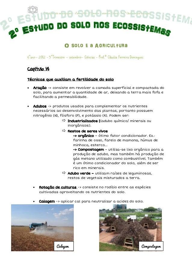 1          2º estudo do solo nos ecossistemas - 6°ano– 2012 - 3°Trimestre – setembro– Ciências - Prof.ª Cláudia Ferreira D...