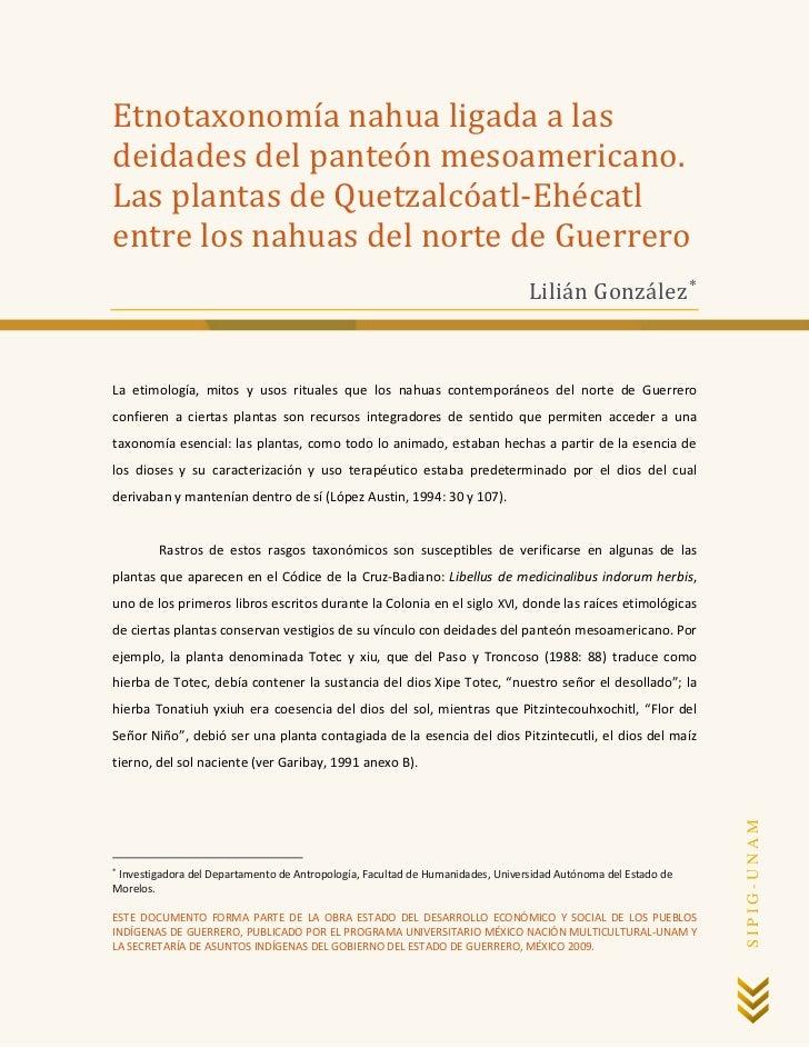 Etnotaxonomía nahua ligada a lasdeidades del panteón mesoamericano.Las plantas de Quetzalcóatl-Ehécatlentre los nahuas del...