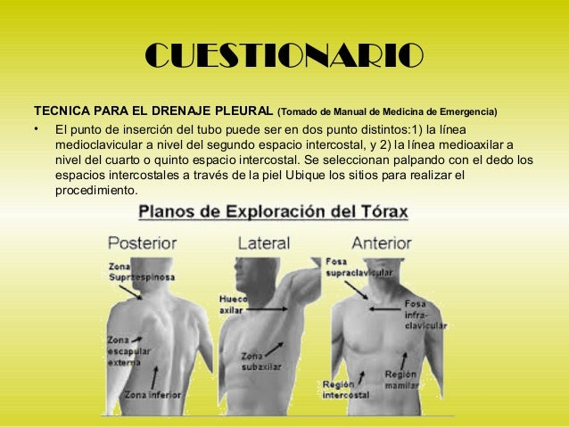 2 examen de torax for Cuarto espacio intercostal