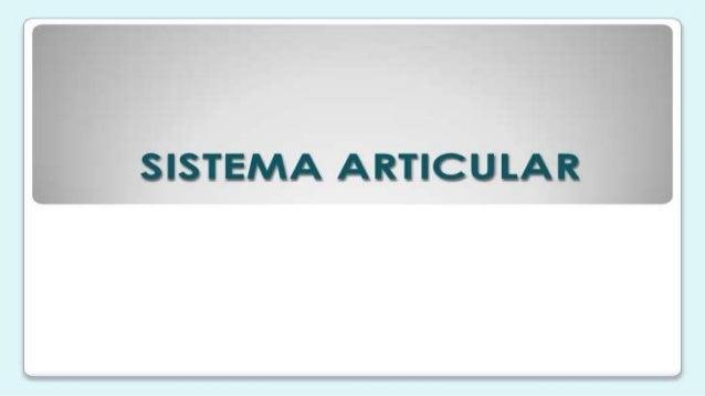 2 expo sistema articular