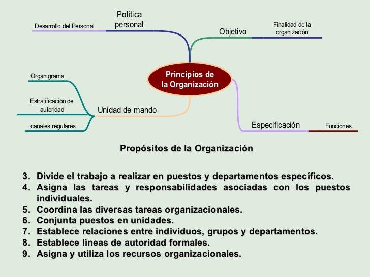 <ul><li>Propósitos de la Organización </li></ul><ul><li>Divide el trabajo a realizar en puestos y departamentos específico...