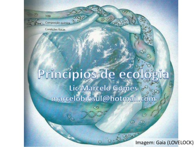 Ecossistema Fluxograma da aula  Definição Estrutura Funcionamento  Imagem: Gaia (LOVELOCK)