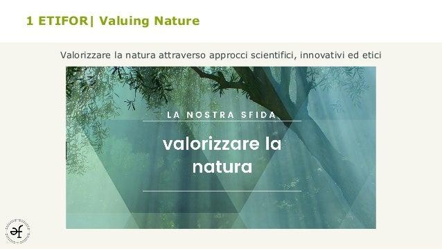 Trend e opportunità per l'ecoturismo nel litorale Veneto Slide 3