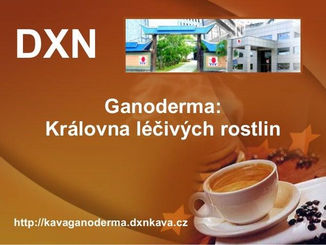 DXN Ganoderma: Královna léčivých rostlin  http://kavaganoderma.dxnkava.cz