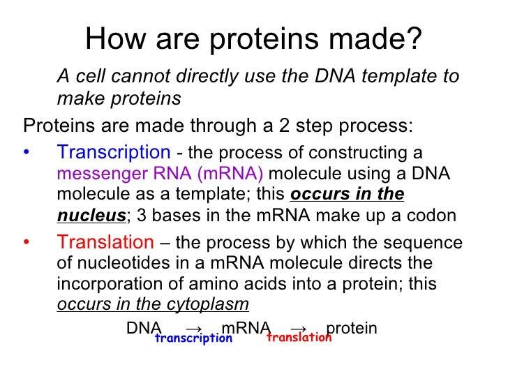 Chapter 20 Molecular Genetics Lesson 2 - Genes ...