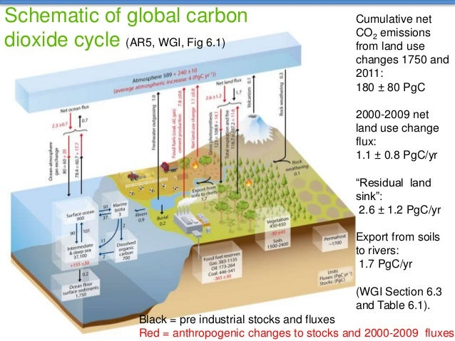 Carbon cycle diagram ipcc diy enthusiasts wiring diagrams ipcc and soil organic carbon key findings of the 5th assessment repo rh slideshare net in the carbon cycle carbon carbon cylce ccuart Choice Image