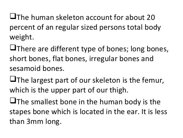 2hrly gs ch p facts about human skeleton, Skeleton