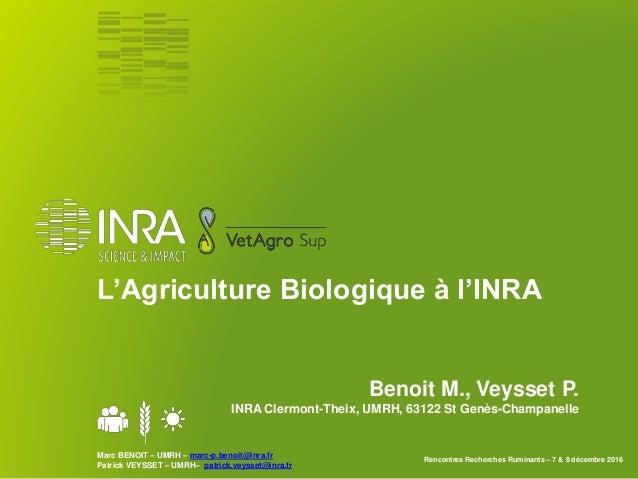 P agriculture biologique