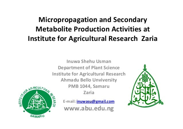 Micropropagation and Secondary Metabolite Production Activities at Institute for Agricultural Research Zaria Inuwa Shehu U...
