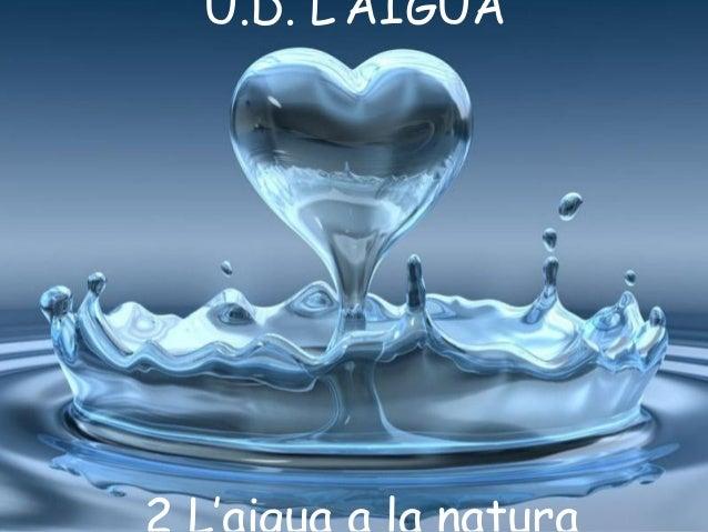 U.D. L'AIGUA