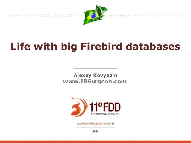 Life with big Firebird databases  Alexey Kovyazin  www.IBSurgeon.com