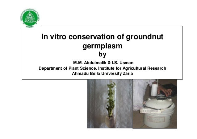 In vitro conservation of groundnut germplasm by M.M. Abdulmalik & I.S. Usman Department of Plant Science, Institute for Ag...